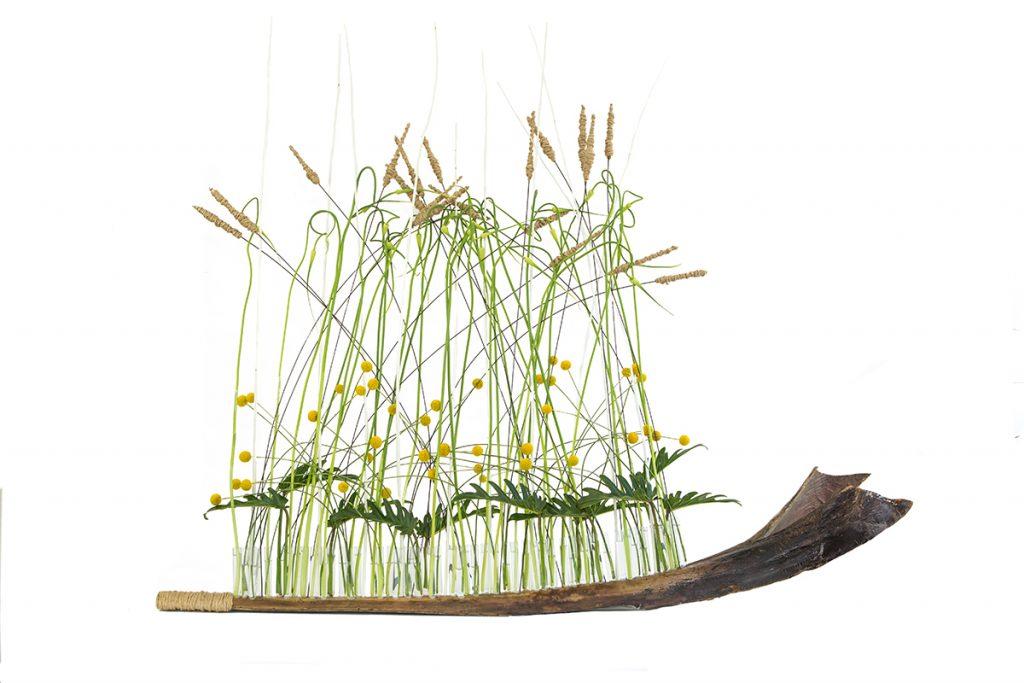 Fleurs de toscane - Gallerie Formations et Parutions
